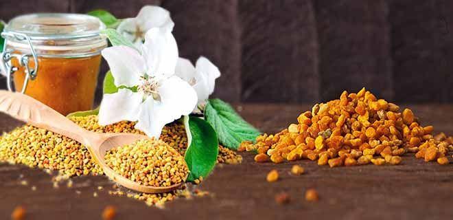 Перга и пыльца