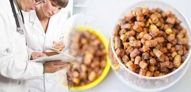 Перга пчелиная применение