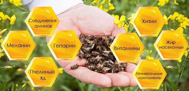 Состав пчелиного подмора