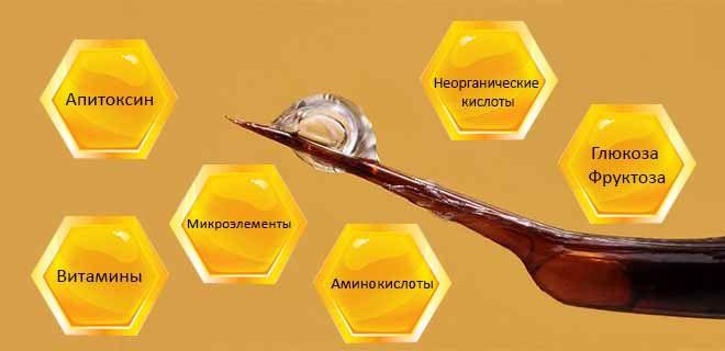 Состав пчелиного яда