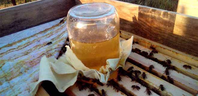 Подкормка пчёл сахарным сиропом