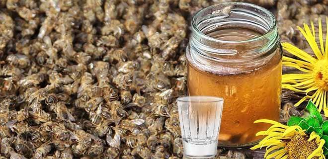 Настойка из мертвых пчел на водке