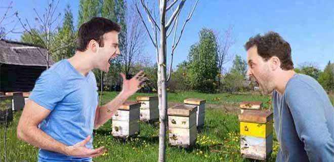 Как избавиться от пчёл соседа