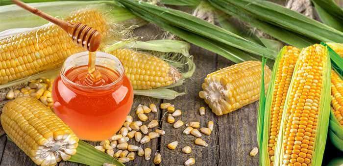 Мед и початки кукурузы
