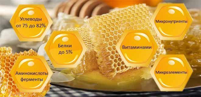 Мёд в сотах состав