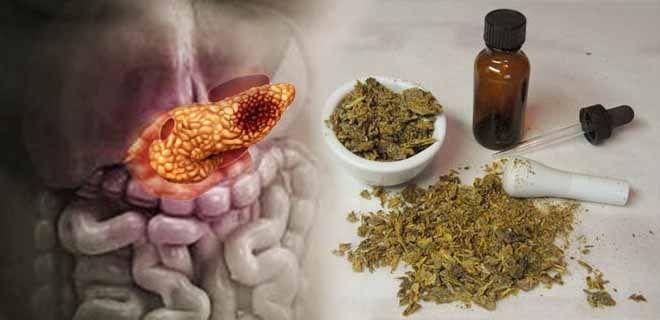 Лечение панкреатита прополисом