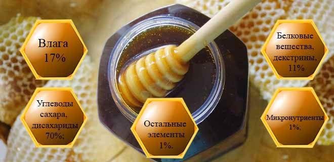 Состав падевого мёда