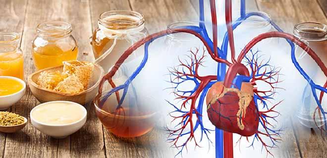 Мед для сердца и сосудов