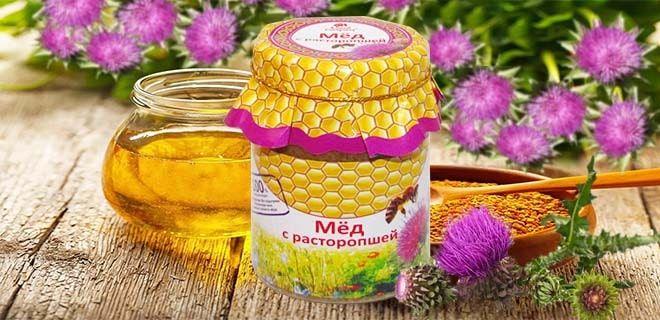 Расторопшевый мёд