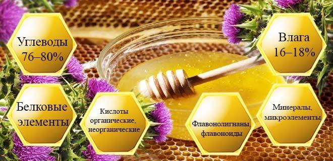 Состав меда из расторопши