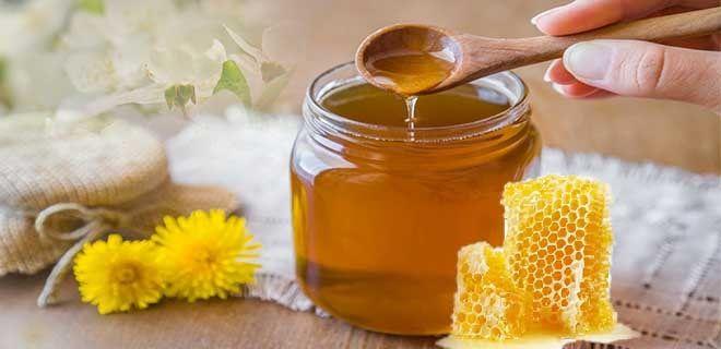 Мед весенний