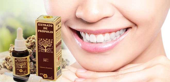 Прополис в стоматологии