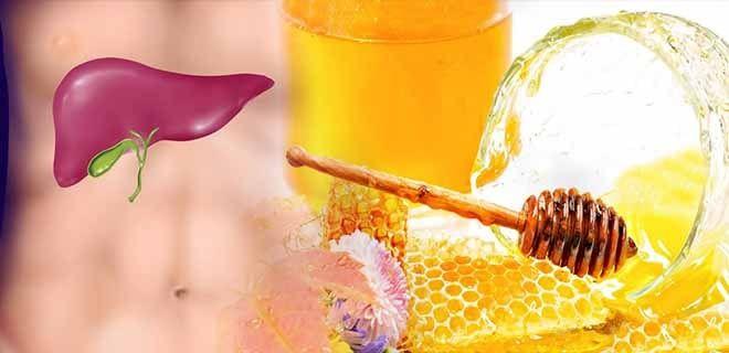 Мед для желчного пузыря