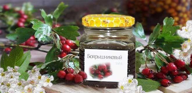 Мед из боярышника