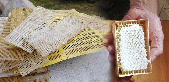 Решетки из пластмассы для сбора прополиса