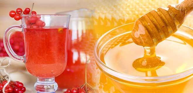 Сок калины с медом