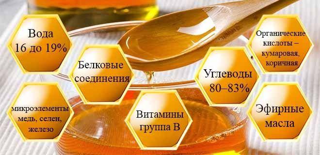 Состав эвкалиптового меда